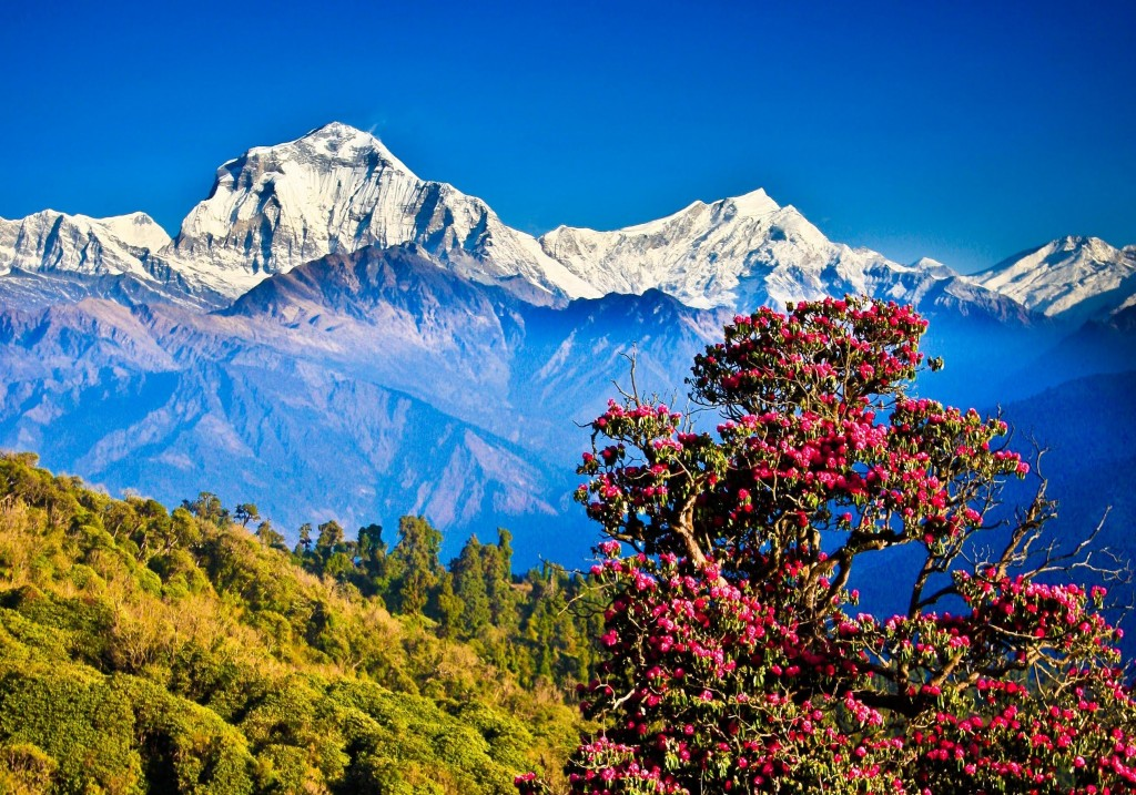 Such beautiful pictures prove why Nepal is a must visit place. Photo KrisTheExtraStout, youtube