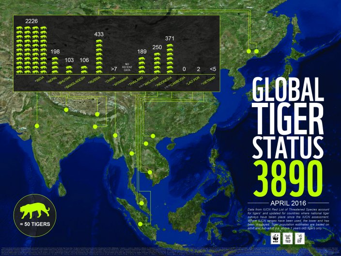 Global Tiger Statistics (Source WWF)